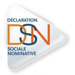 Déclaration Sociale Nominative - DSN
